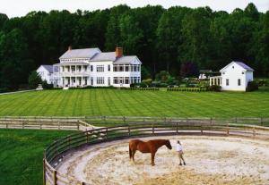 Polk County, NC Real Estate