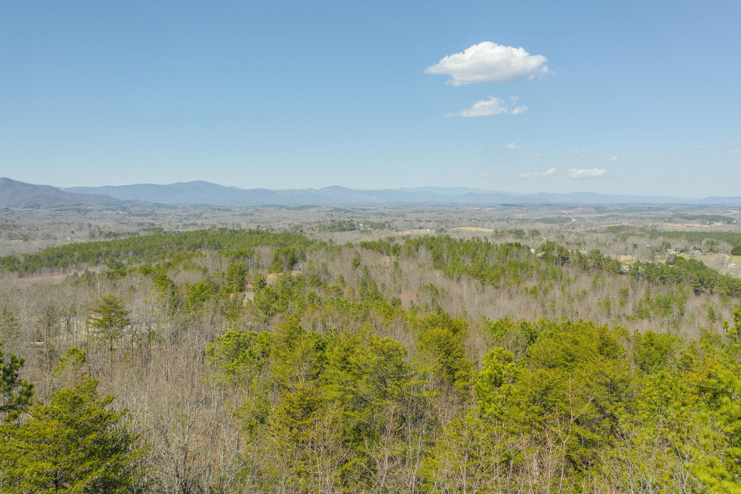 Mountain View Lot: